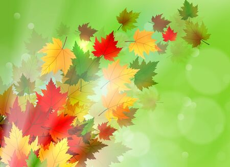 changing colors: Beautiful illustration of maple leaves blowing in the wind and sun rays coming through.