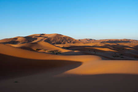 sandhills: Dunes in the Merzouga desert at dawn shadows offering between the form of curves