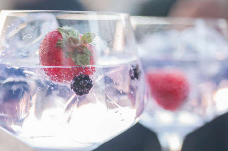 gin: Gin and tonic with lime ice and other fruits