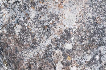 wood textures: Details rock textures in nature Stock Photo