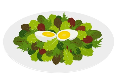 ailment: Mixed salad leaves with hard boiled egg in dish, isolated on white background