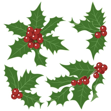 christmas holly decorations isolated on white background stock vector 18728043 - Christmas Holly Decorations
