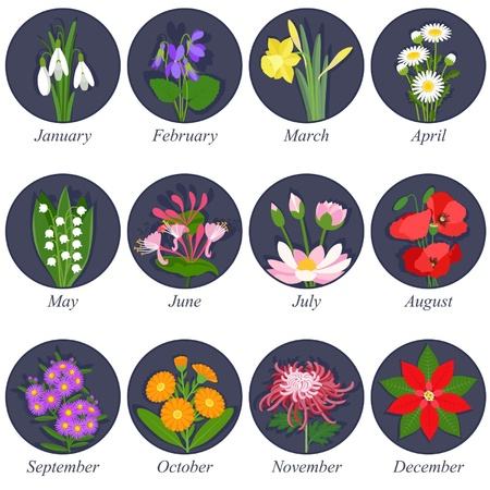 Flowers months of the year on dark background Stock Vector - 20763546