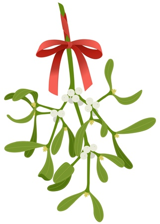 twig: Mistletoe with red bow isolated on white background