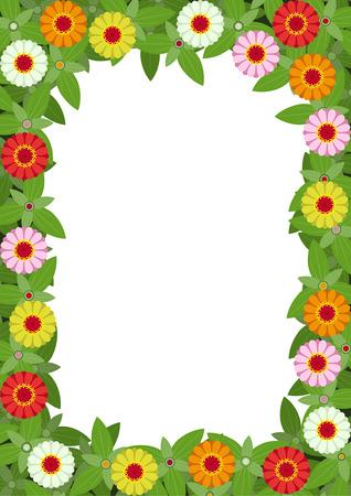orange rose: Frame of zinnias flowers with white background Illustration
