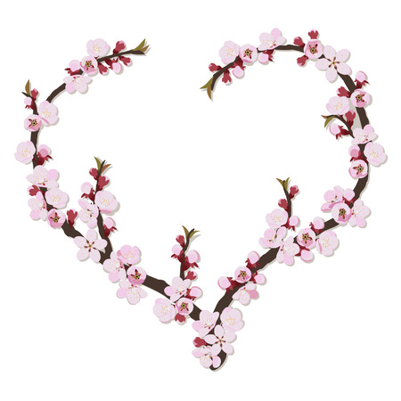 peach blossom: Branch of apricot flowers in the shape of heart