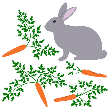 nibble: Rabbit with gnawed carrots