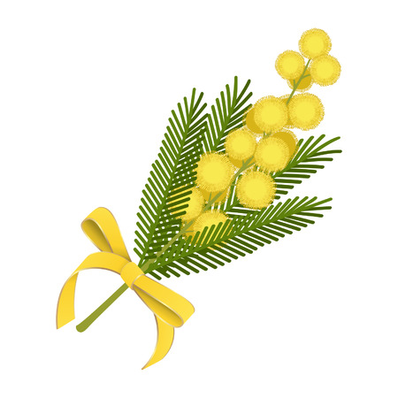 Mimosa sprig with yellow ribbon bow
