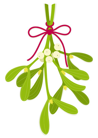 Mistletoe bouquet with bow of red rope Illustration