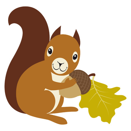 acorn: Squirrel with acorn and oak leaf on white background