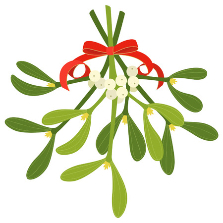 2,692 Isolated Mistletoe Stock Vector Illustration And Royalty ...