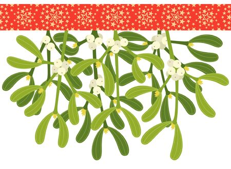 sprigs: Mistletoe sprigs with red starry ribbon, isolated on white background