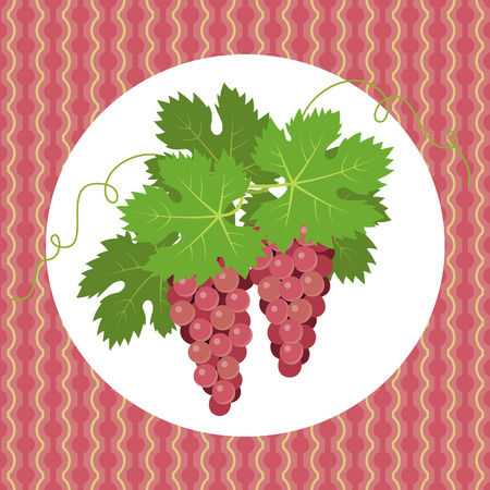 plant to drink: Pink grapes with leaves on pink background Illustration