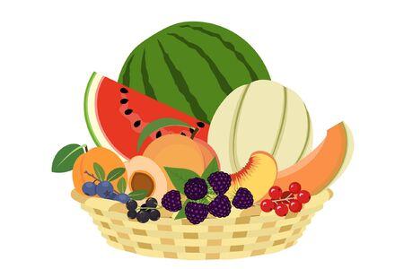 Corbeille de fruits d'été sur fond blanc Vecteurs