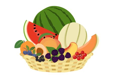 Basket of summer fruit on white background Illustration