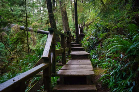 schooner: Schooner Cove Trail, Tofino, Ucluelet, British Columbia Stock Photo
