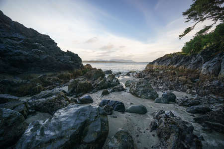 Box Island, Pacific Rim National Park, Tofino British Columbia