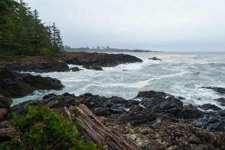 Sentier du Pacifique sauvage, Ucluelet, Tofino, Parc national Pacific Rim, Île de Vancouver, Colombie-Britannique, Canada