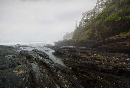 victoria park: Botanical Beach, Juan de Fuca Trail, Port Renfrew, BC, Vancouver Island Canada Stock Photo
