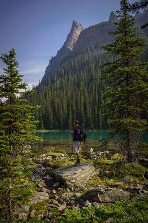 british man: Man looking at the view at Lake OHara, Yoho National Park, British Columbia