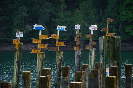 pilings: Bird Houses atop cement pilings at Tod Inlet.  I especially liked the vintage look trailers.