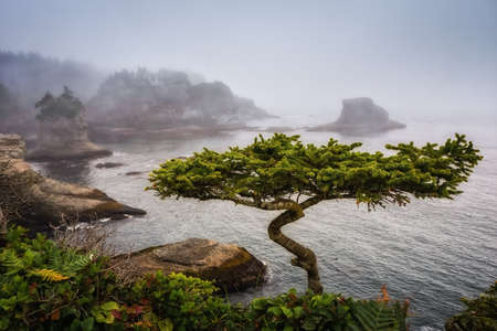 flattery: Cape Flattery is the northwesternmost point of the contiguous United States. It is in Washington State on the  Peninsula, where the Strait of Juan de Fuca joins the Pacific Ocean. I Cape Flattery can be reached from a short easy hike, most of which is boa Stock Photo