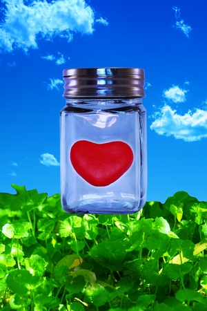contained: Red heart contained in a glass jar in bed of green leaves with a blue sky  Stock Photo