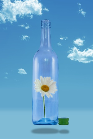 smother: White daisy in floating bottle with the lid off on a blue sky  Stock Photo