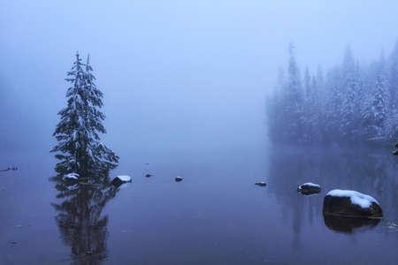 Foggy Lake Banco de Imagens