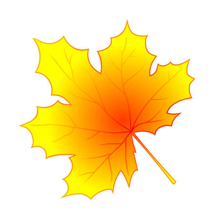 Autumn leaf vector isolated on white background