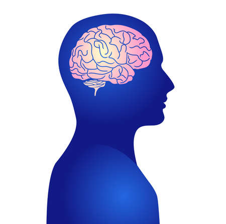 Human active brain vector illustration
