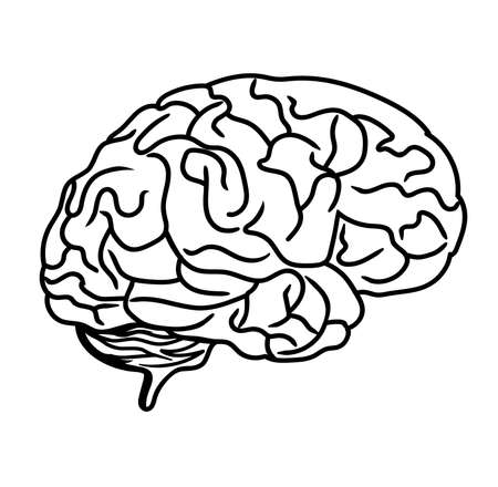 Brain black line drawing vector on white background Ilustração Vetorial