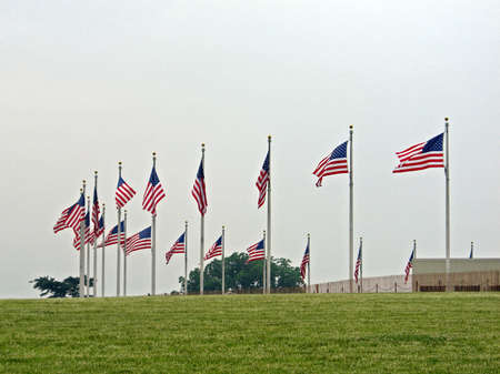 american flags: Flags of the United States waving in the wind around the Washington Monument in Washington D.C.