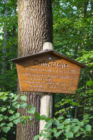 The Cotta-Eiche is a famous tree at the entrance into the Werdau forest and the sign remembers on Heinrich Cotta, who was a co-founder of the local forestry