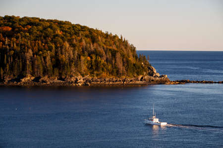 Wooded isle in the bay of Bar Harbor (Maine, USA) Stock Photo