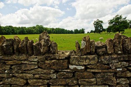 wiltshire: Wiltshire rural scene