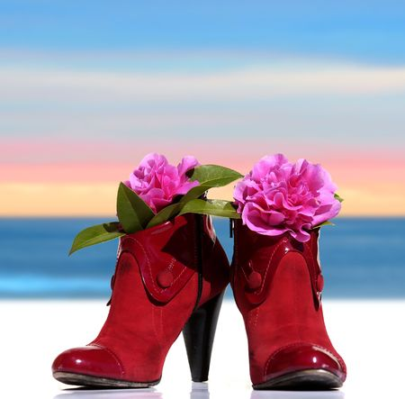 red shoes of a woman model back  whit flowers on sky background                                photo