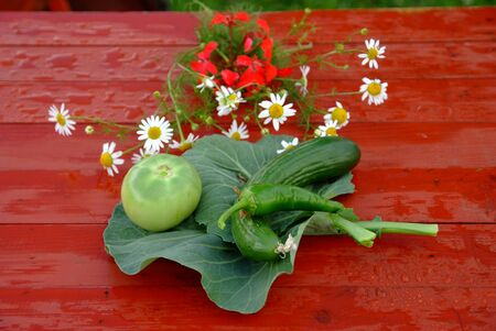 cymbling: Still life with vegetable and flowers
