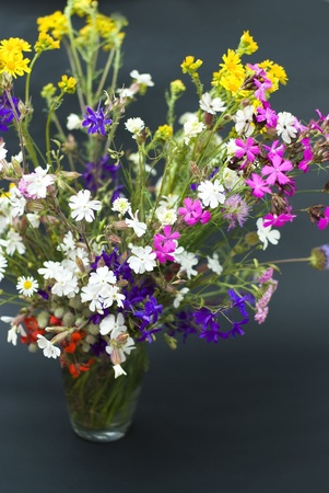 bouquet of summer fresh wild flowers isolated on black background