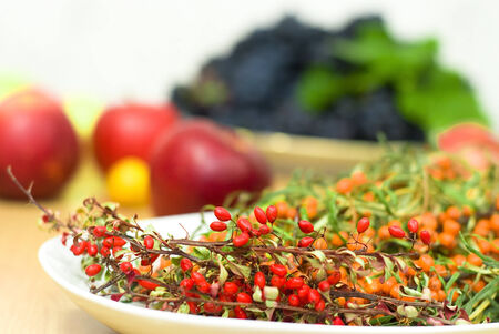 bacca: fresh buckthorn with barberry