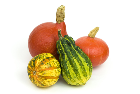 various types of pumpkins on a white background Stock Photo