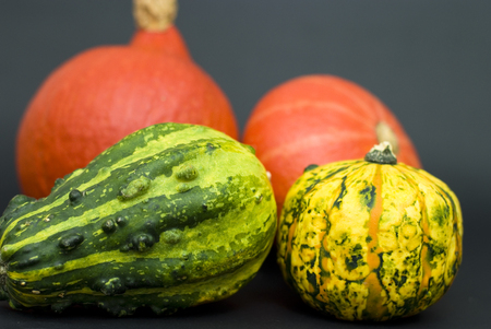 various types of pumpkins on a black background