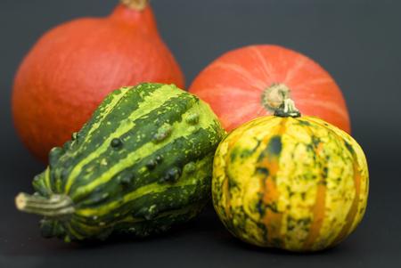 various types of pumpkins Stock Photo
