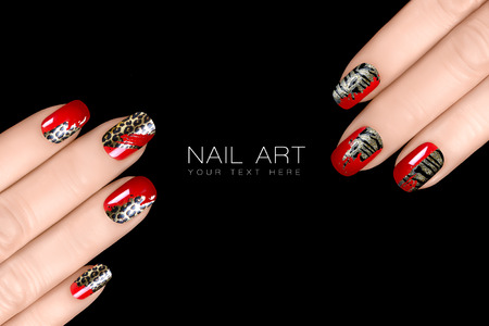nail art: Leopard and Tiger Nail Art. Fashionable nail polish with animal print stickers. Professional manicure and nail tattoo. Closeup of woman hands isolated on black with sample tex. tNail art concept.