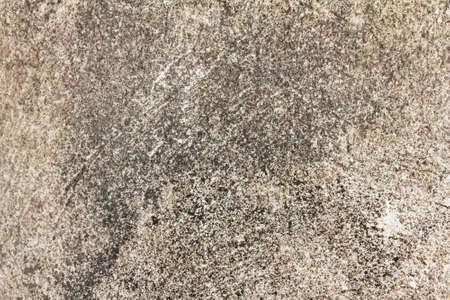 cement floor: cement floor