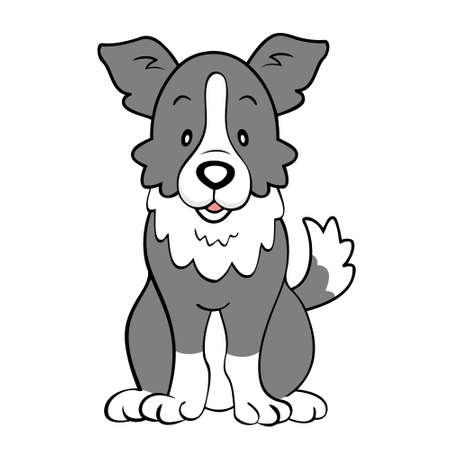 cat grooming: Border collie isolated Illustration