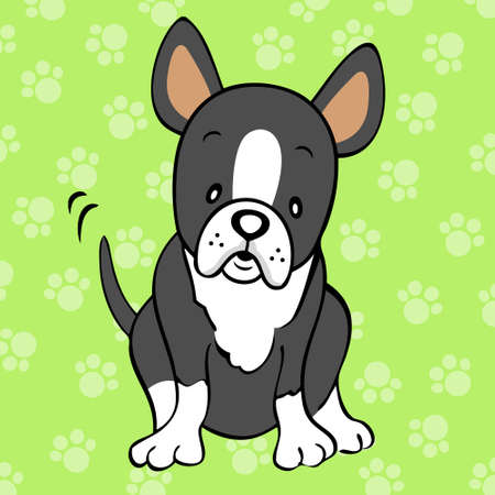 boston terrier: boston terrier Illustration