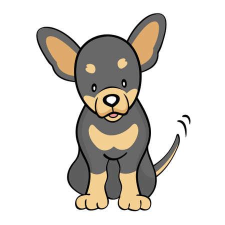 cartoon chihuahua: Black tan Chihuahua isolated