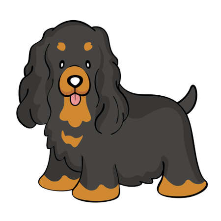 Black tan cocker spaniel isolated Vector
