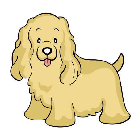 cocker: Cocker spaniel buff isolated Illustration
